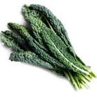 Picture of ORGANIC KALE (BLACK)